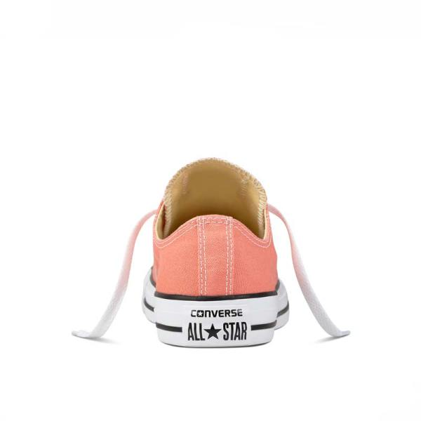 Converse Chuck Taylor All Star Ox Sunblush back