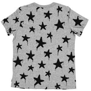 Converse tricko Graffitt Star Crew T-Shirt Vintage Grey Heather back